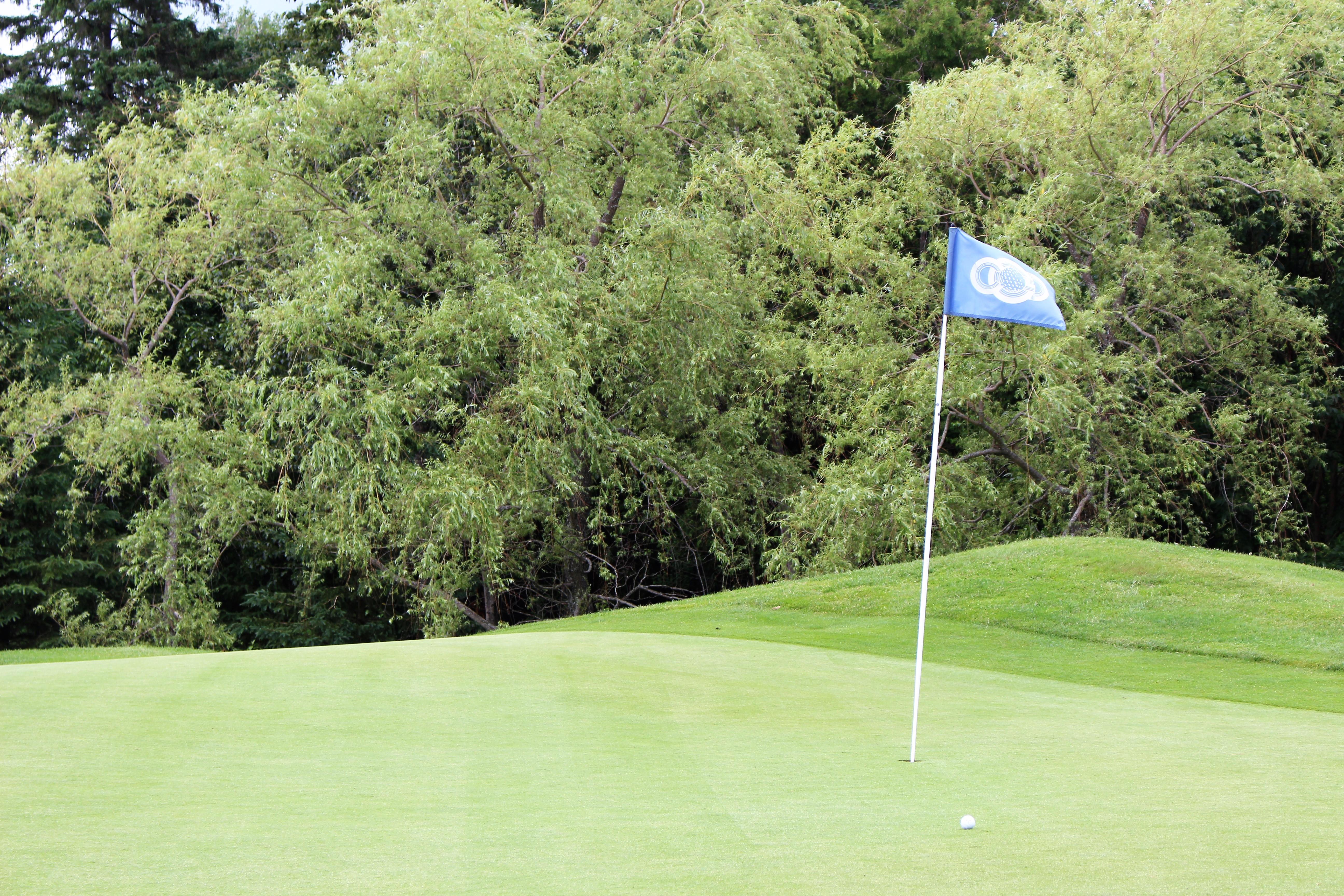 vert golf
